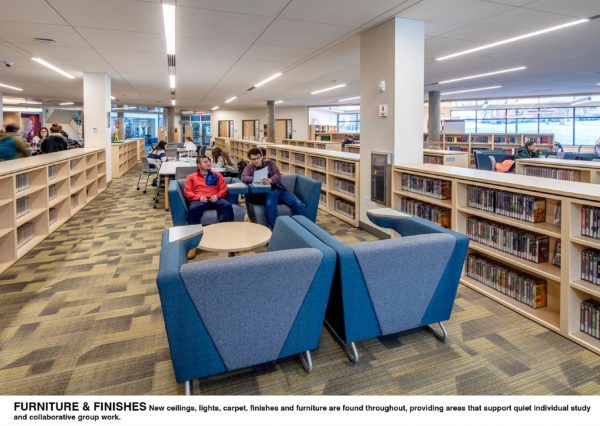 Noreen Reale Falcon Library